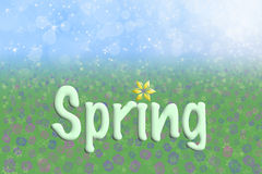 Spring Background Sky Grass Flowers Text Royalty Free Stock Photography
