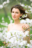 Spring beauty Royalty Free Stock Images