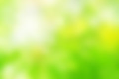 Spring Green Background Blur Royalty Free Stock Image