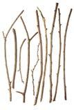 Sticks Stock Photography