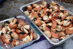 Stone crab claws Stock Photography