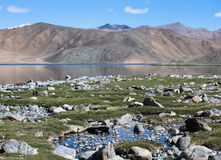 Stony shore of the Bulunkul lake in the mountains of Tajikistan. Royalty Free Stock Photo