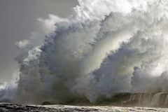 Stormy wave Stock Photography