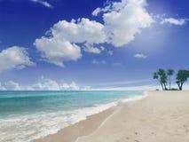 Stranden med gömma i handflatan Royaltyfri Fotografi