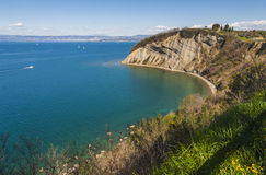 Strunjan cliff, Slovenia Royalty Free Stock Images