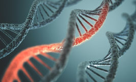 Struttura del DNA Fotografia Stock