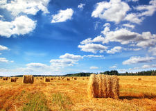 Stubble field and hay bales Royalty Free Stock Photography
