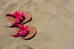 Summer holiday concept Royalty Free Stock Images