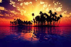 Sun rays inside coconut island Royalty Free Stock Images
