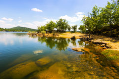Sunny landscape with lake Royalty Free Stock Photos