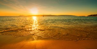 Sunset sunny beach Stock Images