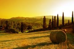 Sunset Tuscany landscape Stock Photography