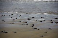 Svartstenar på stranden Royaltyfri Fotografi
