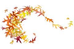 Swirl of Autumn Leaves Stock Image