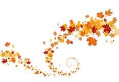 Swirl of leaves Stock Photo