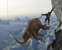 Teamwork, Team, Teams, Sales Marketing Stock Images