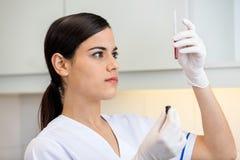 Technician Examining Blood Sample Stock Photos