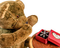 Teddy Bear is delighted with gift Royalty Free Stock Photo