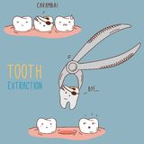 Teeth treatment and care. Dental collection of Stock Image