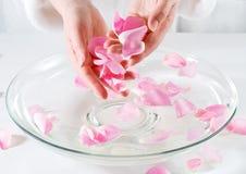 Termas da pétala de Rosa Fotos de Stock Royalty Free