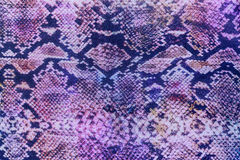 Texture of print fabric striped snake leather Stock Images