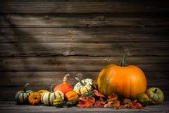 thanksgiving Immagine Stock