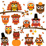 Thanksgiving and Autumn Themed Vector Owl Collection Royalty Free Stock Image