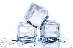 Three melting ice cubes Stock Image