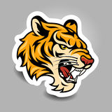 Tiger sticker Royalty Free Stock Photography
