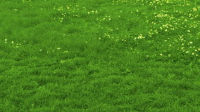 Time lapse - mowing lawn stock video footage