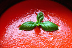 Tomato pasta sauce and basil Royalty Free Stock Image