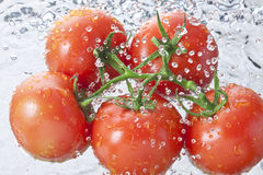 Tomatoes Water Spray Healthy Food Royalty Free Stock Photography