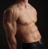 Torso nudo dell'uomo muscolare Fotografia Stock