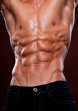 Torso with six pack Royalty Free Stock Image