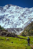 On the trail to Nanga Parbat Royalty Free Stock Images