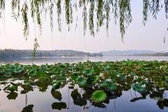 Travertine im Hangzhou See, China Stockfotos