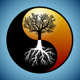 Tree and its roots in yin yang symbol Stock Images