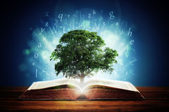 Tree of knowledge Royalty Free Stock Image