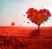 Tree of love Royalty Free Stock Photography