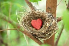 Tree Love Nest Heart Valentine Stock Photography