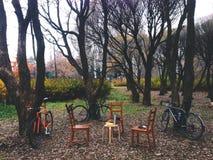 Trois bicyclettes dans le parc près de trois chaises et une table sous les arbres en parc Photo libre de droits