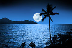 Ocean Night Moon Sky Tropical Royalty Free Stock Images