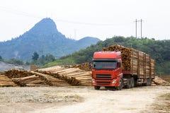 Truck transportation in log yard Royalty Free Stock Image