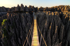 Tsingy canyon bridge Stock Photography