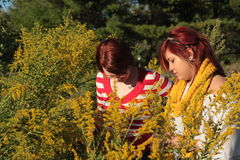 Two Women in a Field Looking at Goldenrods Stock Photos