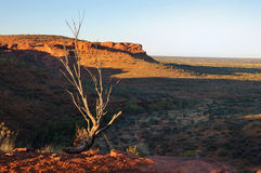 Typical Australian Outback Scene (King's Canyon) Royalty Free Stock Photography