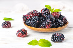 Вunch of wild berries and mint Stock Photography