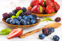 Вunch of wild berries Royalty Free Stock Photo