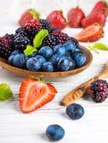 Вunch of wild berries Stock Photography