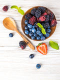 Вunch of wild berries Royalty Free Stock Images